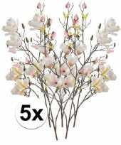 Hobby x creme magnolia kunstbloemen tak 10110122