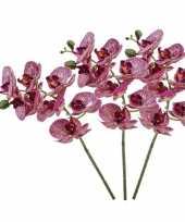 Hobby x fuchsia roze phaleanopsis vlinderorchidee kunstbloemen 10139517