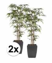 Hobby x groene bamboe promo kunstplant pot