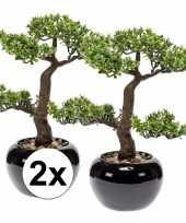 Hobby x groene bonsai boom kunstplanten pot