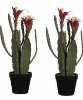 Hobby x groene cactus kunstplanten groene plastic pot 10159786