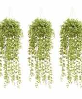 Hobby x groene hedera klimop kunstplanten pot