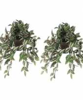 Hobby x groene tradescantia vaderplant kunstplant hangende pot