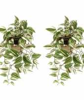 Hobby x groene tradescantia vaderplant kunstplanten