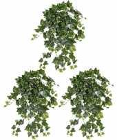 Hobby x groene witte hedera helix klimop kunstplant buiten 10153435