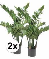 Hobby x groene zamioculcus kunstplant