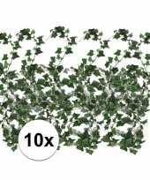 Hobby x klimop slinger hedera helix 10106165
