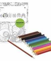 Hobby x knutsel papieren maskers om te kleuren incl potloden