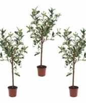 Hobby x kunstplant groene olijfboom betonlook pot 10135458