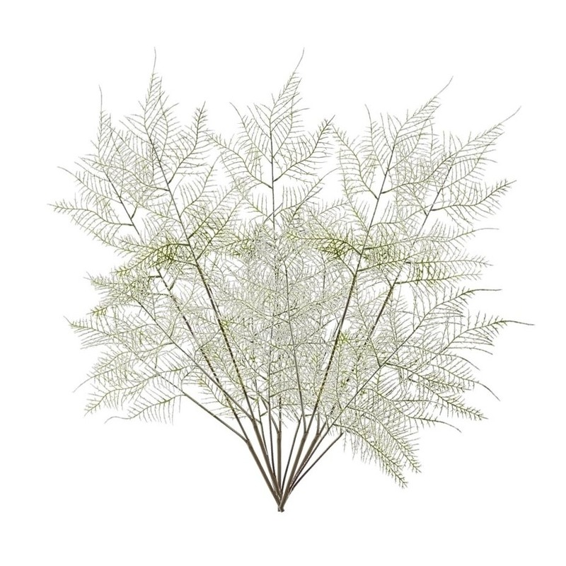 Hobby x kunstplanten aspergeplant takken groen 10132214