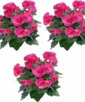 Hobby x kunstplanten begonia roze