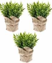 Hobby x kunstplanten muizendoorn kruiden groen jute pot 10162079