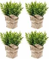 Hobby x kunstplanten muizendoorn kruiden groen jute pot 10162080