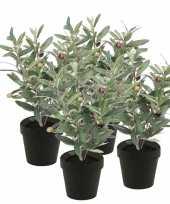 Hobby x kunstplanten olijfboompje groen zwarte pot 10134844