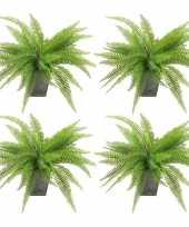 Hobby x kunstplanten varen groen pot 10157851