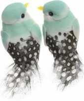 Hobby x licht mintgroene vogels decoraties draad 10247767