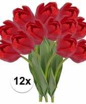 Hobby x rode tulp kunstbloemen 10107328