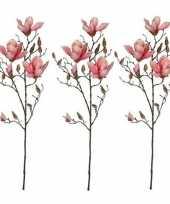 Hobby x roze magnolia beverboom kunsttak kunstplant 10159838