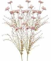 Hobby x roze papaver klaproos gedroogde kunstbloemen 10154645