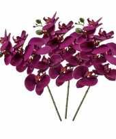 Hobby x violet paars phaleanopsis vlinderorchidee kunstbloemen 10139505