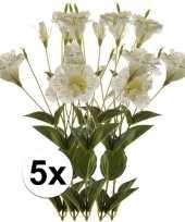 Hobby x wit groene kunst lisianthus tak 10102969