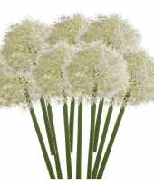 Hobby x witte allium sierui kunstbloemen 10142957